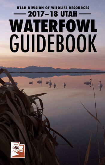 Waterfowl Hunting Guidebook